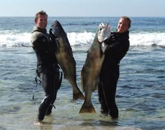 Spearfishing brothers, Matt and Brett Berry, simultaneously catch fish of a lifetime.
