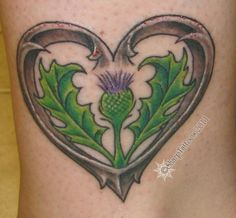 Scottish Thistles Tattoos Designs, Scottish Thistles Tattoos Ideas, Scottish Thistles Tattoos Pictures | Find Me a Tattoo