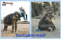 Elephant Fail Funny  [ More Funny Pictures: http://www.picsgag.com/funny-animals/ ]