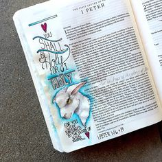 1Peter 1:16 & 19 we are called to be holy like our Heavenly Father, like our salvation in the flesh Jesus Christ. We must remember we were ransomed by The Lamb. Free of all spots or blemishes, perfect in every way. Our ultimate sacrifice. #bible #biblejournaling #jamiedoughertydesigns #godsword #godislove #creatinginfaith #illustratedfaith