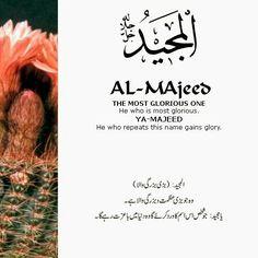 Al Majeed