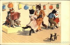 Cats Dancing to Accordion Music