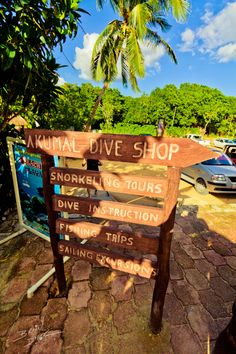 Akumal Dive Shop... Pretty much one of the greatest places in the world. With an amazing staff!