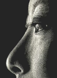 A study on Eyes and Noses - WetCanvas