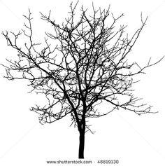 stock-vector-tree-silhouette-detailed-vector-48819130.jpg (450×452)