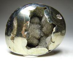 Pyrite replaced Ammonite, Dubrovsky Mine, Saratov, Russia ❦ CRYSTALS ❦ semi precious stones ❦ Kristall  ❦ Minerals ❦    Cristales ❦
