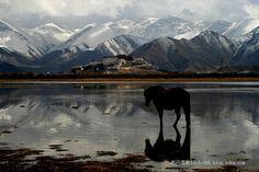 Das Wahrzeichen Tibets zieht täglich unzählige Pilger an und thront imposant über der Hauptstadt Lhasa.