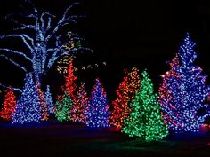 longwood gardens at christmas beautiful lights and flowers
