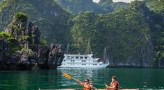 Vietnam Holidays, Local Tour, Tourism Industry, Travel Agency, Tour Guide, 10 Years, Lotus, Wordpress, Passion