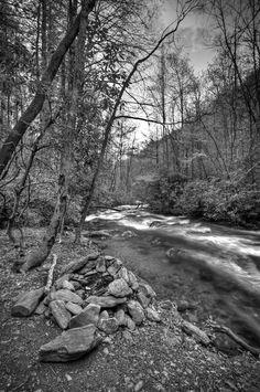 Empty campsite near Davidson River campground - Pisgah National Forest, North Carolina - black and white  www.douglasadamsphotography.com