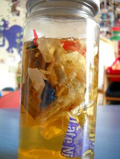 Earth day experiment with litter