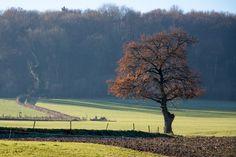 Zuid Limburg Epen Diependal 2013