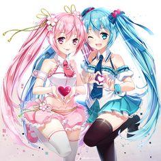 re 312511 hatsune_miku hieihirai sakura_miku thighhighs valentine vocaloid Hatsune Miku, Kaito, Kawaii Anime, Kawaii Girl, Manga Girl, Manga Anime, Anime Art, Anime Girls, Cartoon Girls