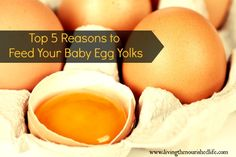 Top 5 Reasons to Feed Your Baby Egg Yolks--->Yes, EGG YOLKS!