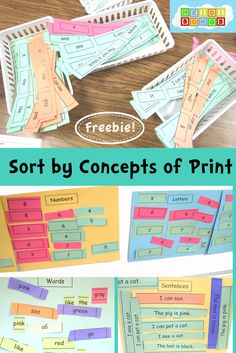 Sort by Concepts of Print Freebie from HeidiSongs! #kindergarten