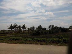 Kampoeng
