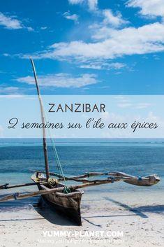 Découvrez le compte-rendu de notre voyage sur l'île africaine de Zanzibar, entre détente et découvertes culturelles.