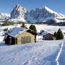 The official website of South Tyrol for travel & tourist information.From the most beautiful sights to an accommodation search with all hotels, apartments and Ski Europe, Ski Season, Ski Holidays, South Tyrol, Paradise On Earth, Winter Hiking, Das Hotel, Cross Country Skiing, Luxury Travel