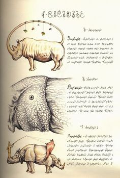 Codex Seraphinianus is the most fascinating product of a single human mind I have encountered to date
