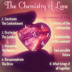 """Love, it's just a chemical reaction. And I've got the formula between my fingertips… (Card 1) You start with a hefty dose of Seratonin. This is the lovely """"warm fuzzy"""" feel you get in a relationship,..."""
