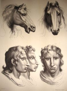 """Renaissance-Era Drawings Reveal Early Ideas About Evolution, works by """"the greatest French artist of all time,"""" according to Louis XIV. Charles Le Brun (1619-1690) used his artistry to compare human and animal faces, later inspiring Charles Darwin to write The Expression of the Emotions in Man and Animals."""
