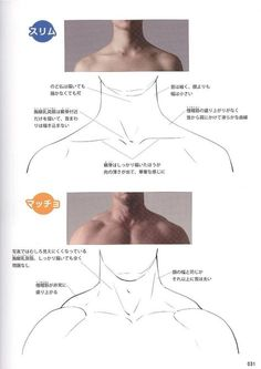 Reference Guide for Drawing Male Muscles – 160枚の写真 | VK