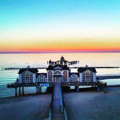 33 Gründe, warum Du dieses Jahr lieber auf Rügen Urlaub machen solltest Au Pair, Dog Owners, Germany, Mansions, House Styles, Festivals, Travelling, Sport, Photo Mural