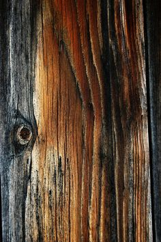 Texture 14 by Mithgariel-stock Visual Texture, Texture Art, Texture Painting, Wood Patterns, Textures Patterns, Wood Texture Background, Distressed Texture, Wooden Textures, Nature Artists