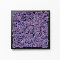 A frame with decorative reindeer moss on the wall can change the ambiance of .