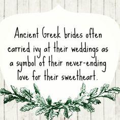 Ancient Greek weddings @Gemma Docherty Docherty Docherty Crumlin  we will have to get you some! X