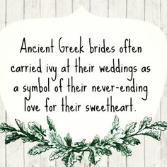 Ancient Greek weddings @Gemma Docherty Docherty Docherty Crumlin  we will have to get you some! X