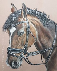 Finally finished...well maybe a little tweaking left. This has been my first go at a larger drawing and it seems to have taken me an age, but I have loved the time spent at the board. Hope you like it.  Pastels on pastelmat.  #animal_artists #pastelportraits #pastelpencils #equinepastels #equineportraits #instapets #instaart #animalsoninstagram #horsesofinstagram #animal_art_feature #horsesinart #petportraits #animaldrawing #animalportrait #pasteldrawing #equineart