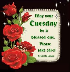 Tuesday blessings.