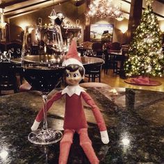 Tinsel is ready for the Holidays and is celebrating with a nice glass of Lodola Nuova Vino Nobile #HappyHolidays
