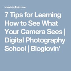 7 Tips for Learning How to See What Your Camera Sees   Digital Photography School   Bloglovin'