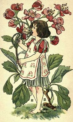 Another in our Victorian Girl series by the wonderful illustrator Nellie Benson, Hawthorn takes a moment to smell the flowers.
