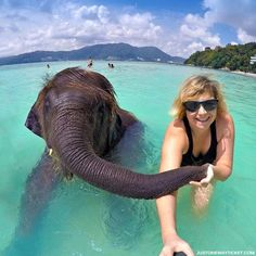 Elephant Bathing | Travel Guide To Phuket: Things To Do in Phuket And Places To Stay | Phuket offers natural beauty, rich culture, white beaches, tropical islands and plenty of adventure activities | via @Just1WayTicket | Photo © Sabrina Iovino