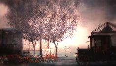 Featuring The Blooming Tree with Soft wind animations by Little Branch - Available at TLC Taxi Blooming Trees, Morning Light, Art, Art Background, Flowering Trees, Kunst, Performing Arts, Art Education Resources, Artworks