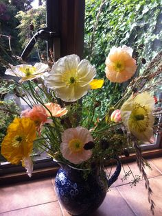 The Iceland Poppies were first to flower in my new cutting patch. I arranged these with grasses, sorrel and burnet.  The flowers just kept coming, and were beautifully scented. They were a great start to the summer! http://www.sarahraven.com/flowers/seeds/poppies