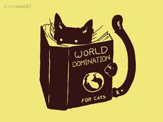 I love how cat stuff keep popping up in my Pinterest feed...