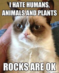 Rocks are OK!   I Hate Humans, Animals and Plants... Rocks are OK.   @quickmeme
