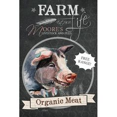 "August Grove Chalkboard Series: Organic Meat Vintage Advertisement on Wrapped Canvas Size: 40"" H x 26"" W x 1.5"" D"