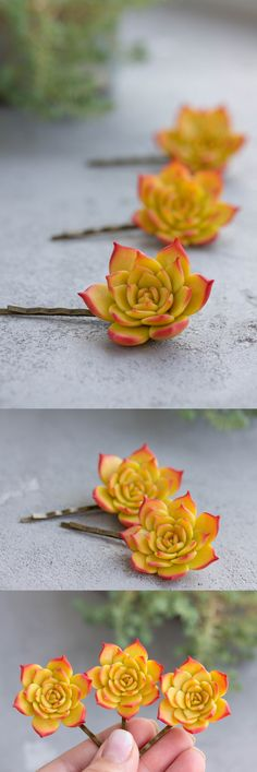 Succulent hair pins (handmade) from @EtenIren #succulents #hair #pins #Style #gifts #Love #succulent #plants #fashion