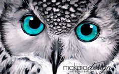 """Owl Painting """"Aqua"""" Black and White with Pop of Color Mixed Media Canvas Print Black And White Owl, Black And White Painting, Solid Black, Artist Canvas, Canvas Art, Framed Canvas, Lion Flower, Owl Art, Mixed Media Canvas"""