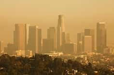 How clean is the air you breathe? The American Lung Association evaluated cities for three types of air pollution: Ozone Year-round particle pollution Short-term particle pollution You need air-protection for the health of your families. American Lung Association, Air Pollution, Air Purifier, Our World, Lunges, Seattle Skyline, Mother Nature, San Francisco Skyline, This Is Us