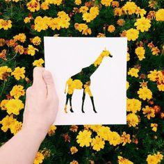 Silhouettes d'animaux par Nikolai Tolsty - Journal du Design