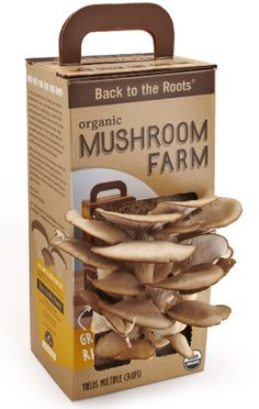 I want to try this... GROW YOU OWN MUSHROOMS AT HOME – PORTABELLA, OYSTER, SHIITAKE, MOREL, CHICKEN OF THE WOODS #garden