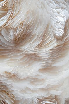 Rowan Mersh 2014 / abstract feather photograph / color inspiration / black and white / monochromatic / texture / pattern / nature / art Textile Texture, Texture Art, White Texture, Feather Texture, Rowan, Textiles, Textures Patterns, Color Patterns, Organic Forms