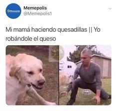 ¡sólo lᥲ sᥱgundᥲ pᥲrtᥱ dᥱ un lιbro ᥱl cuᥲl sᥱ bᥲsᥲb… Humor Memes Do Dia, Blackpink Memes, Cute Memes, Funny Memes, Lgbt Memes, Funny Spanish Memes, Spanish Humor, Funny V, Fresh Memes