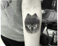 Dr Woo Pomeranian tattoo
